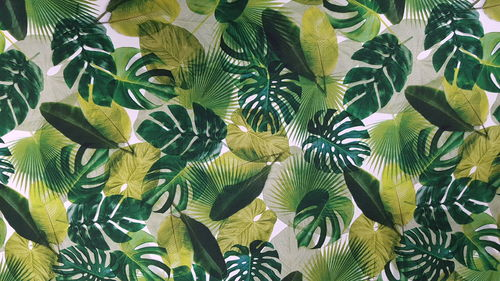 Digitale print Palm Leaves 283