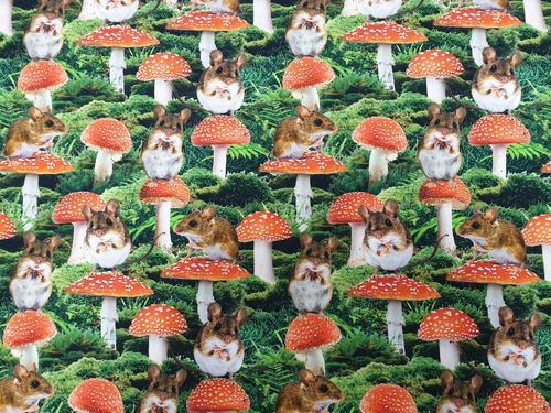 Digitale print 367 Mushrooms