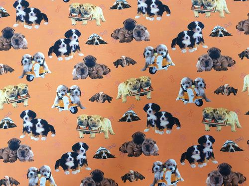 Digitale print 368 Twin puppies