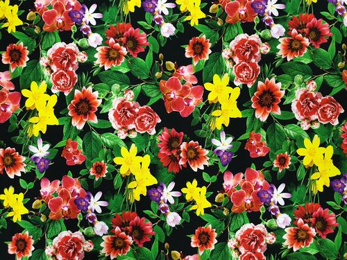Digitale print 373 Flowers